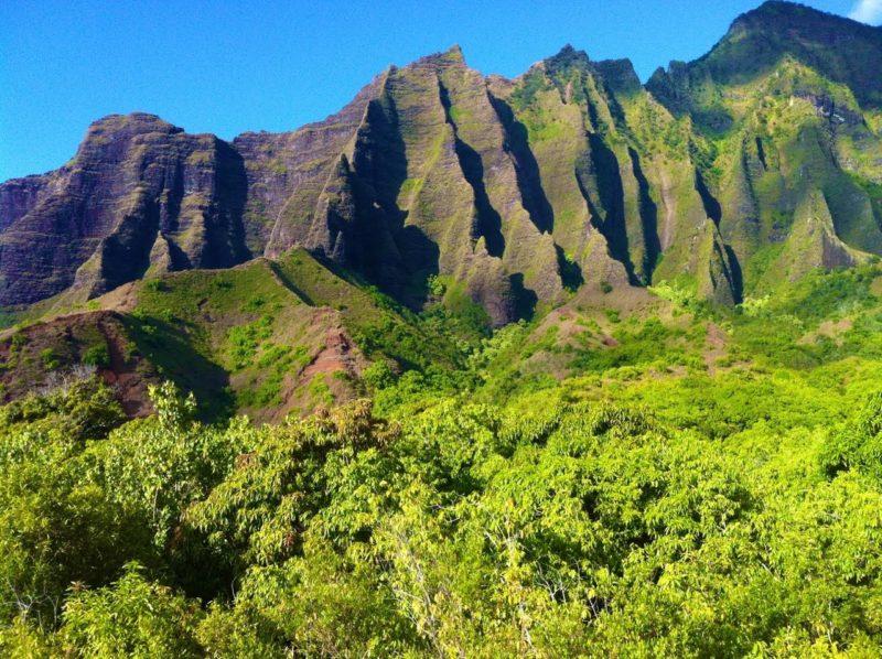 Tropical Green on Kauai