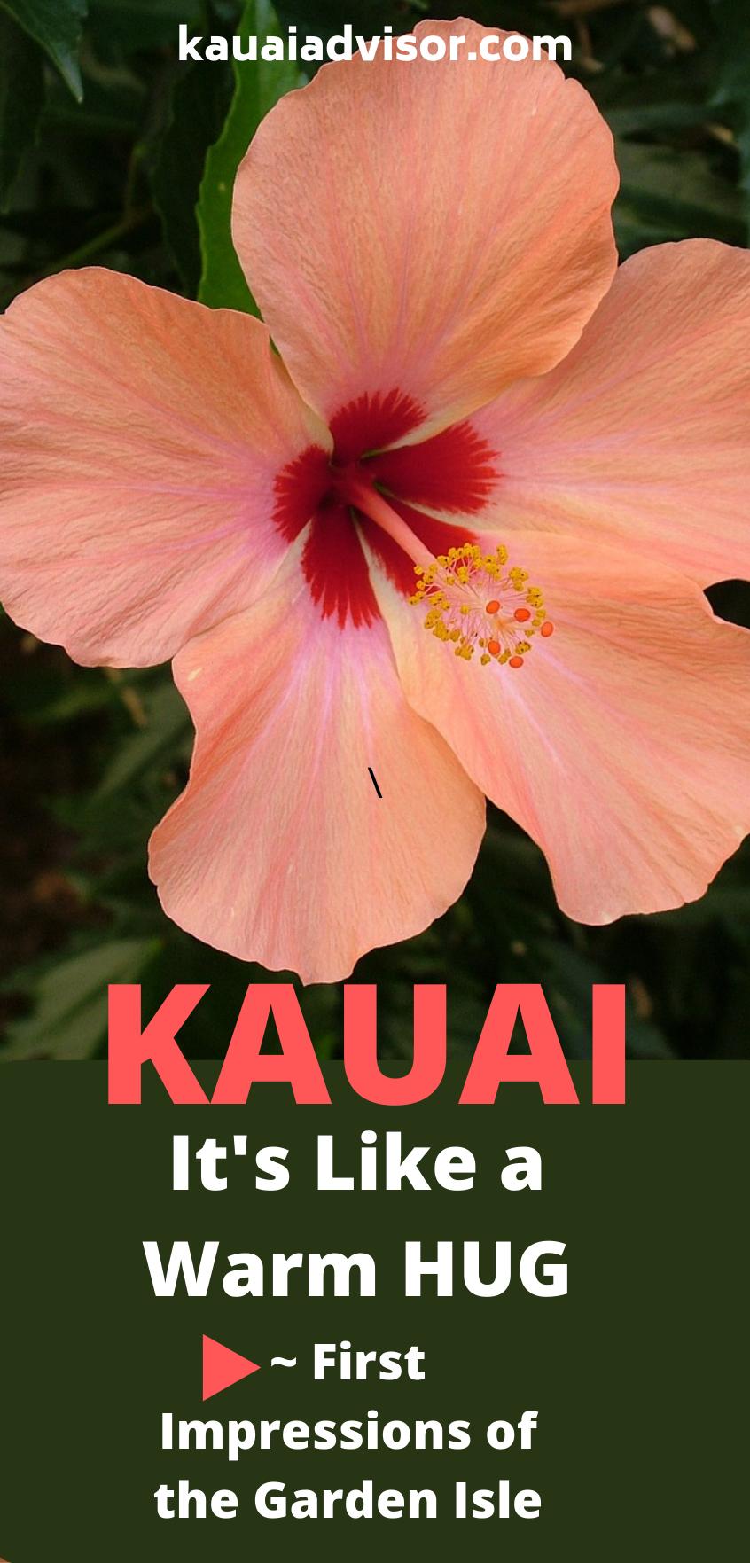 Kauai Garden Isle Hibiscus