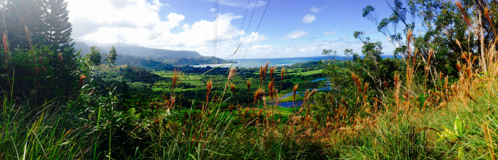 Great Hike with Hanalei Views Kauai