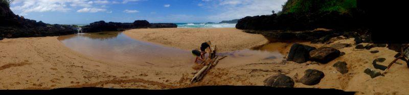 Kauapea Beach kauai
