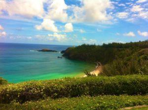 Tropical Green Kauai Beach