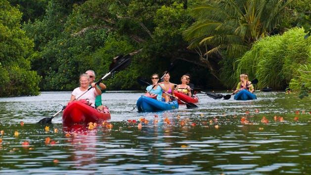 Kayaking up the Huleia River Kauai