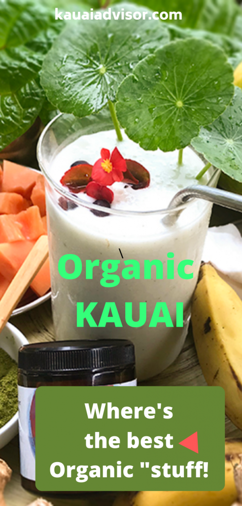 Organic smoothie Kauai