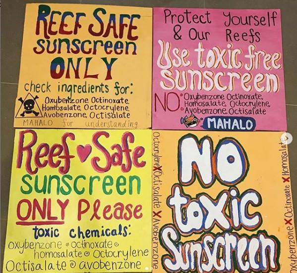 No Toxic Sunscreen