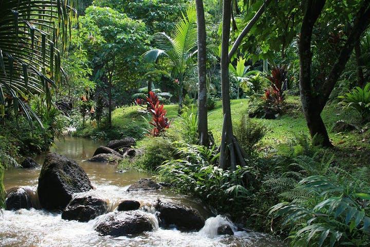 Kauai's Princeville Botanical Gardems