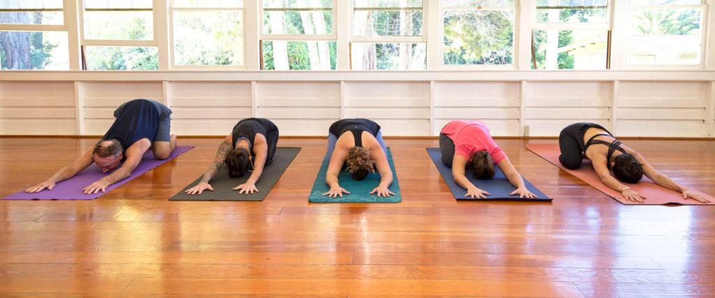 Waimea Yoga Kauai