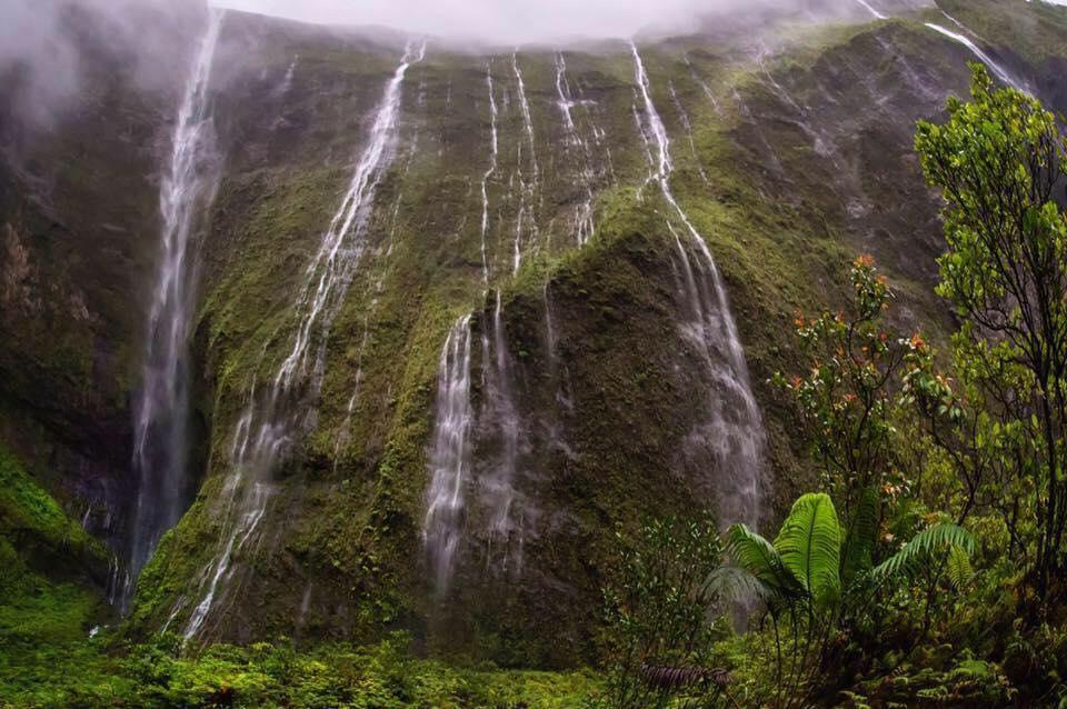 Weeping Wall Falls Kauai