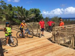 Kauai Bike Path ~ Kauai's Coconut Coast