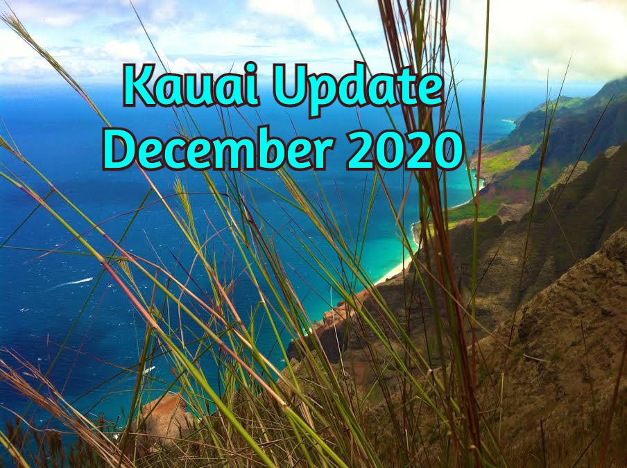 Blue Ocean Kauai