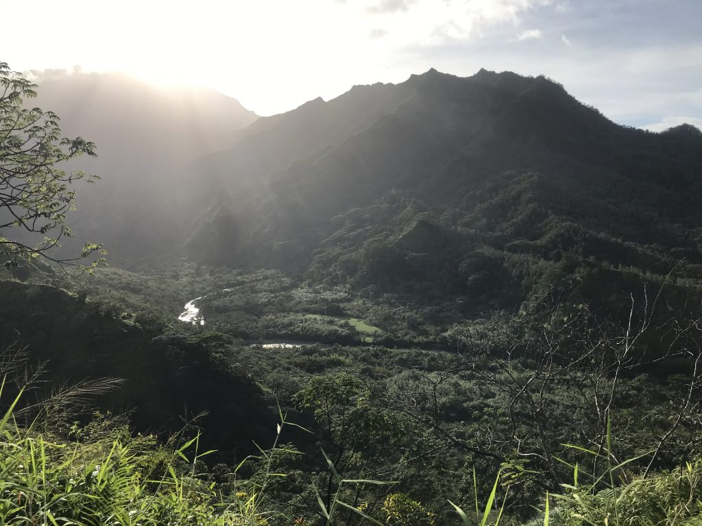 View of Valley with sunshine